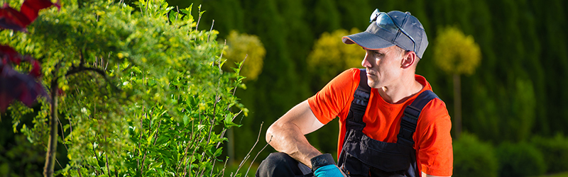 Landscapers and Gardeners Public Liability Insurance